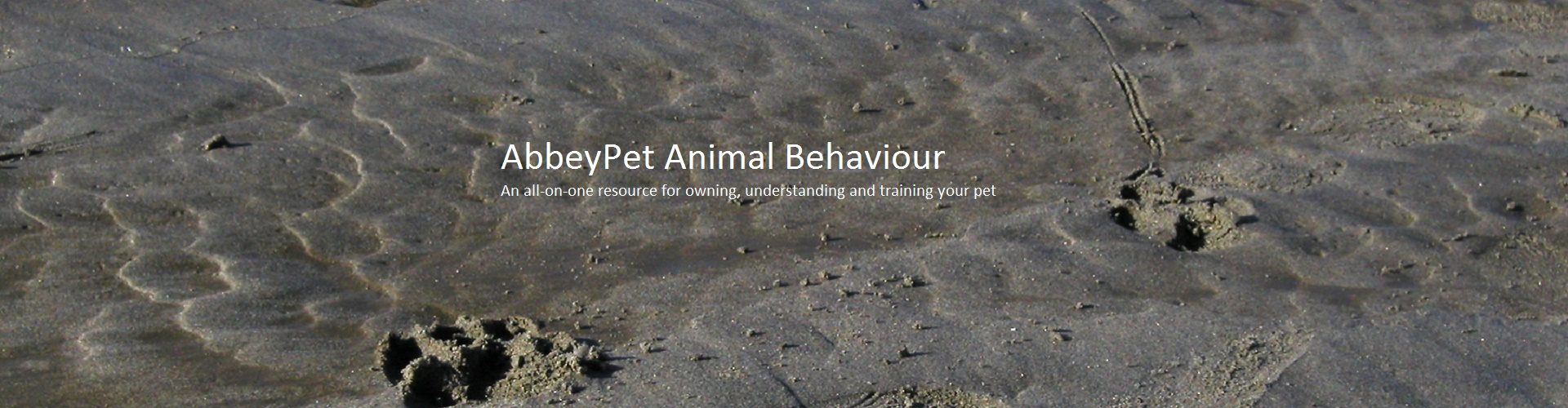 AbbeyPet Animal Behaviour Clinic-Banner